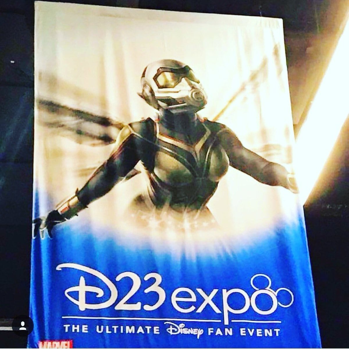 D23 Expo Wasp Suit